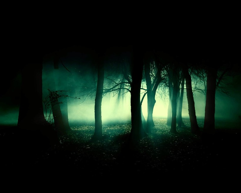 Forest-wallpapers-background-desktop_dophuquy.com_04