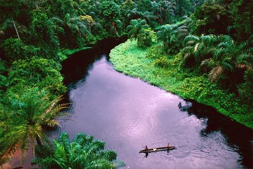 2._Song_Congo_p_hoang_s